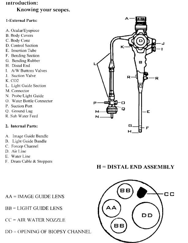 Endoscope endoscopy faq and inspection procedures endoscopy museum ccuart Choice Image